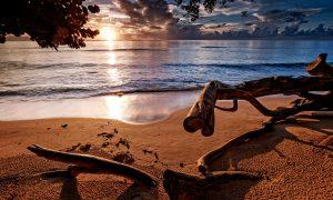 Rihanna´s Beach